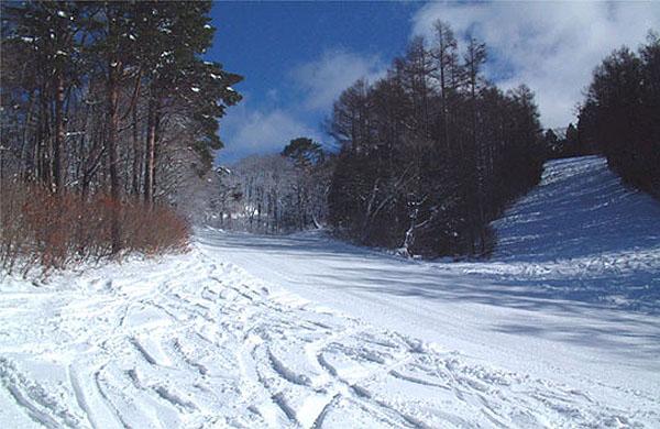 林間コース パラダイスコース  マジカルコース   林間コース:鷲ヶ岳スキー場